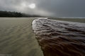Combers Beach, British Columbia, Canada, Pacific Rim National Park, fog, morning