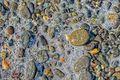 Bubbles, rocks, Dungeness National Wildlife Refuge, Washington, waves, stones