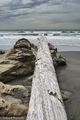 driftwood, Beach 3, Olympic National Park, Washington, rocks
