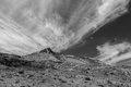 blast zone, Mount St. Helens National Monument, Washington, 1980, eruption, north face, mountain