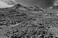 Mount St. Helens National Monument, Washington, Windy Ridge Trail