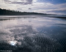 Combers Beach, Pacific Rim National Park, British Columbia, Canada, sky, reflection, sand, ripples