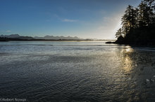 Schooner Cove, sunrise, Pacific Rim National Park, British Columbia, Canada, tide