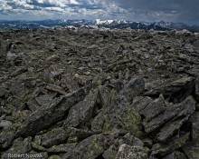 Never Summer Range, Mt. Chapin, Colorado, Rocky Mountain National Park, rocks, lichen