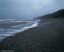 Olympic National Park, Washington, coast, morning, gray
