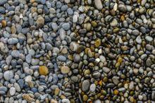 Ruby Beach, Olympic National Park, Washington, stones, tide,
