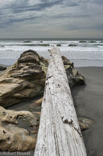 driftwood, Beach 3, Olympic National Park, Washington, rocks