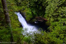 Wallace Falls State Park, Washington, Wallace Falls, Wallace River