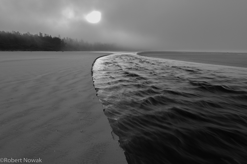 sun, stream, Pacific Rim National Park, British Columbia, Canada, fog, Combers Beach, morning