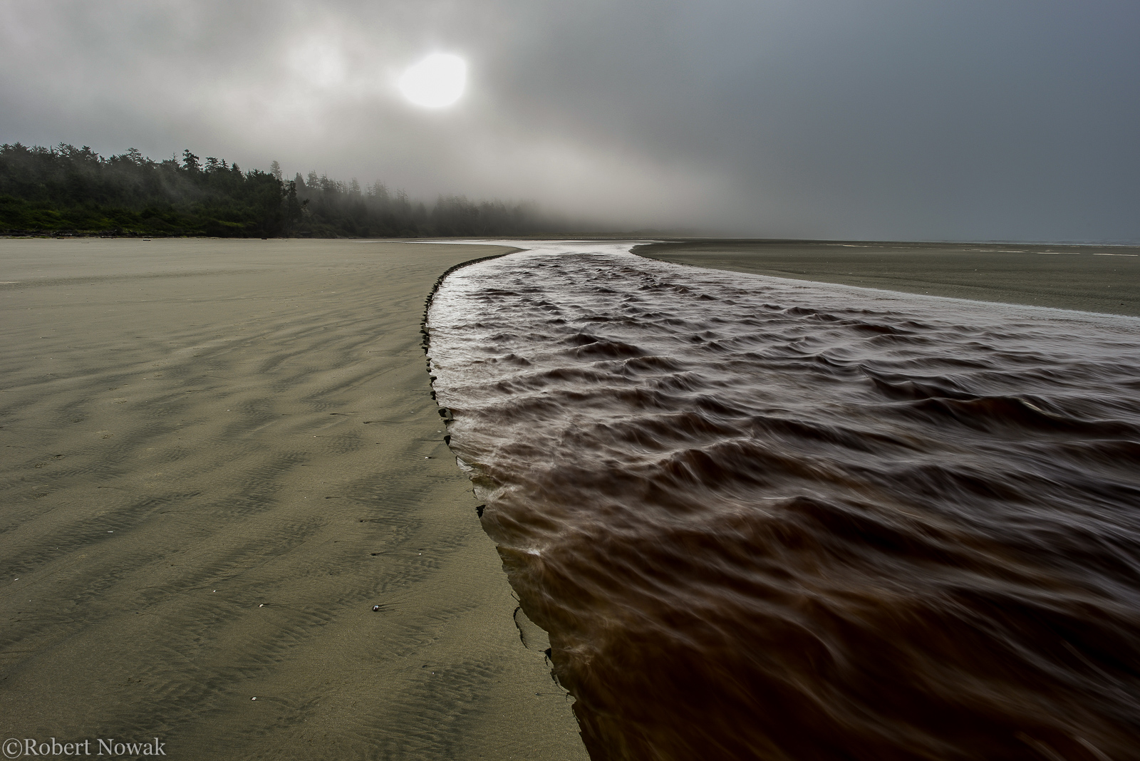 sun, stream, Pacific Rim National Park, British Columbia, Canada, fog, Combers Beach, morning, photo