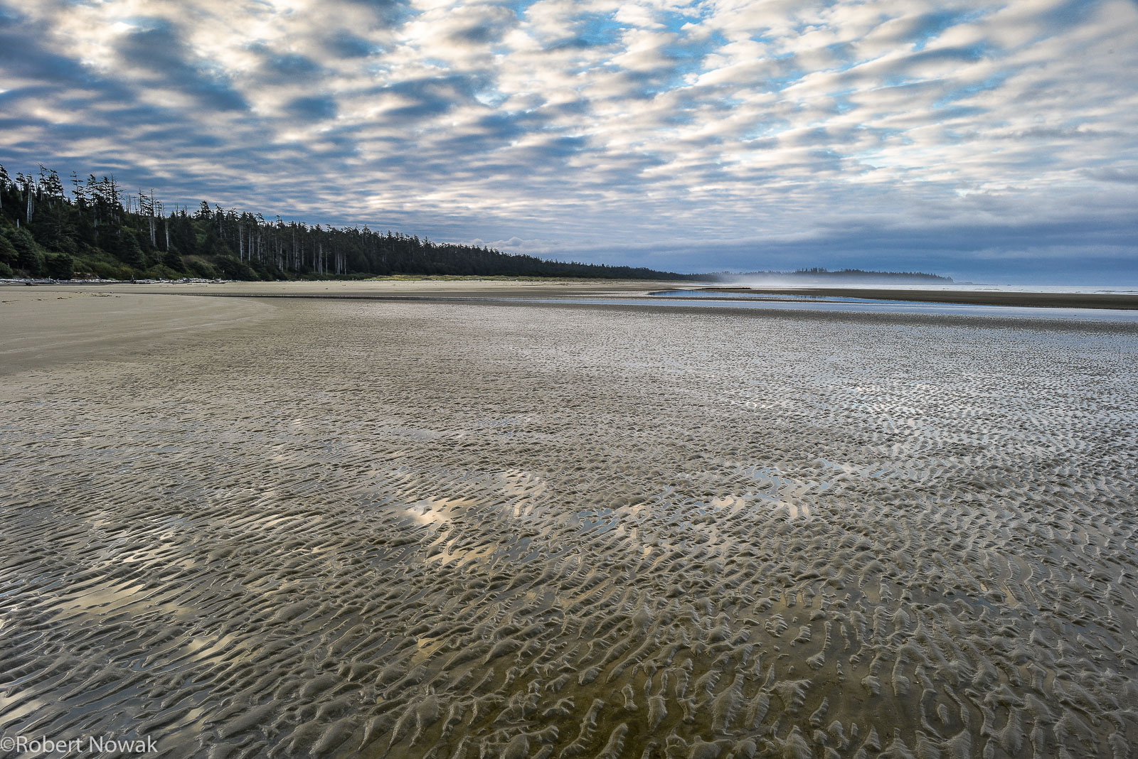 Combers Beach, Pacific Rim National Park, British Columbia, Canada, sky, reflection, sand, ripples, photo