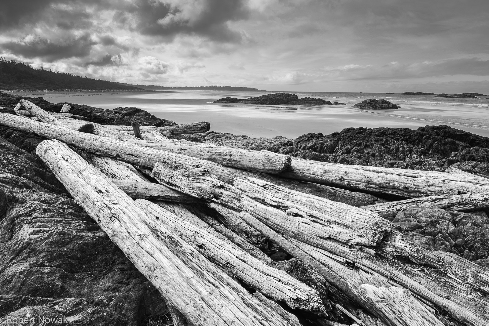 washed, ashore, pacific rim national park, British Columbia, Canada, Long Beach, photo