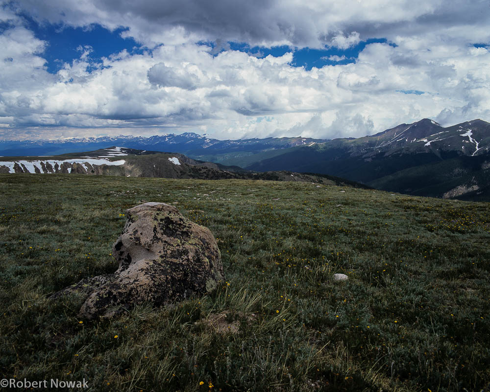 Berthoud Pass, Colorado, Arapaho National Forest, Continental Divide Trail, alpine, timberline, photo