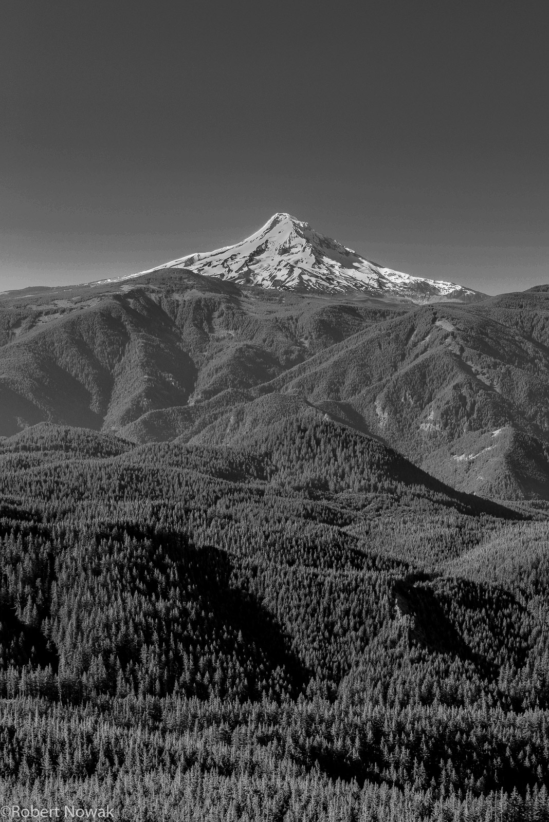 Mt. Hood, Gifford Pinchot National Forest, Washington, Grassy Knoll, summit, photo